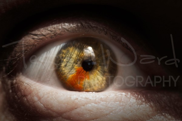 Eye Macro People Photography Iris